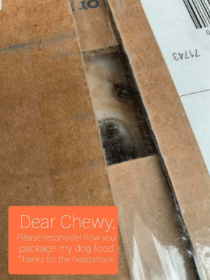 A quick note to Chewy…: A quick note to Chewy…