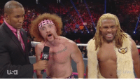 Wrestling, World Wrestling Entertainment, and Hell: A RAW  Usa WHAT THE HELL HAPPENED TO SHEAMUS AND TYLER BREEZE?!