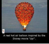 """hot air balloons: A real hot air balloon inspired by the  Disney movie """"Up!"""""""