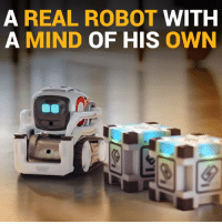 Cozmo is a toy robot, but he's not remote controlled.  He has a mind of his own: http://amzn.to/2i5g3uR: A REAL ROBOT  WITH  A MIND OF HIS OWN Cozmo is a toy robot, but he's not remote controlled.  He has a mind of his own: http://amzn.to/2i5g3uR