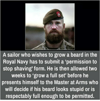 """A sailor who wishes to grow a beard in the  Royal Navy has to submit a """"permission to  stop shaving' form. He is then allowed two  weeks to """"grow a full set' before he  presents himself to the Master at Arms who  will decide if his beard looks stupid or is  respectably full enough to be permitted."""