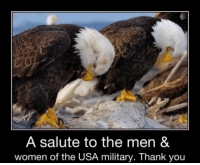 Awesome.. when duty calls you're always there Thanks again !!!!!: A salute to the men &  women of the USA military. Thank you Awesome.. when duty calls you're always there Thanks again !!!!!