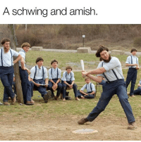 Funny, Memes, and 🤖: A Schwing and amish Pun badpun funny punnstagram