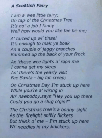 """A: A Scottish Fairy  I am a wee little fairy,  On tap o' the Christmas Tree  It's no a job I fancy  Well how would you like tae be me  A tarted up wi' tinsel  It's enough to mak ye boak  An a couple o' jaggy branches  Rammed up the back o' your frock  An 'these wee lights a roon me  I canna get my sleep  An' there's the yearly visit  Fae Santa big fat creepi  On Christmas Day I'm stuck up here  While you're a wiring in  An' naebodoy says """"Hey you up there  Could you go a slug o'gin?""""  The Christmas tree's a bonny sight  As the firelight softly flickers  But think o' me I stuck up here  Wi' needles in my knickers. A"""