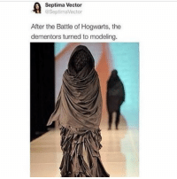 Ironic, Models, and Vector: A Septima Vector  After the Battle of Hogwarts, the  dementors turned to modeling.