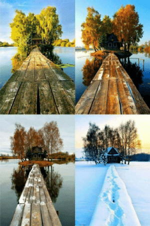 Four Seasons,  Shack, and Seasons: A shack in four seasons