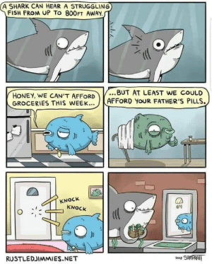 Shark, Fish, and Net: A SHARK CAN HEAR A STRUGGLING  FISH FROM UP To 800FT AWAY  HONEY, WE CANT AFFORD.BUT AT LEAST WE COULD  GROCERIES THIS WEEK  AFFORD YOUR FATHER'S PILLS.  KNOCk  KNOCk  RUSTLEDJIMMIES.NET Sharkie is very caring ♡