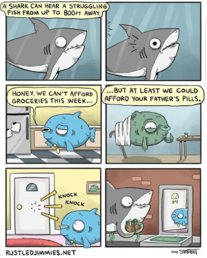 Shark, Fish, and Wholesome: A SHARK CAN HEAR A STRUGGLING  FISH FROM UP TO 800FT AWAY  ..BUT AT LEAST WE COULD  HONEY, WE CAN 'T AFFORD  GRO  CERIES THIS WEEK...LAFFORD YOUR FATHER'S PILLS.  KNOCK  KNOCK  64  RUSTLEDIMMIES.NET I don't know if this is wholesome enough but I thought I could post this here..