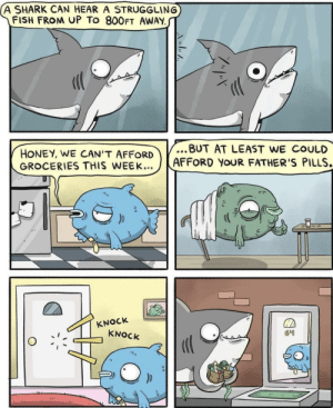 Memes, Shark, and Book: (A SHARK CAN HEAR A STRUGGLING  FISH FROM UP To 800FT AWAY  ...BUT AT LEAST WE COULD  HONEY, WE CAN'T AFFORD  GROCERIES THIS WEEK...  AFFORD YOUR FATHER'S PILLS.  KNOCK  KNOCK Don't judge a book by its cover via /r/memes http://bit.ly/2VHMByl