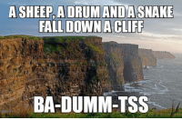 This Joke Is So Terrible, It's Actually Funny: A SHEEP, A DRUM ANDA SNAKE  FALL DOWN A CLIFF  BA-DUMM-TSS This Joke Is So Terrible, It's Actually Funny