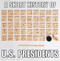 A SHORT HISTORY OF  WEFUCKINGHATEDONALDTRUMP  US PRESIDENTS Truth. Thanks to my wife's help at @outofstepford!! 🤡👊