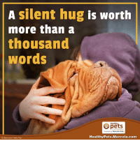 mercola: A silent hug is worth  more than a  thousand  Words  Healthy  Presented by Mercola.com  Healthy Pets.Mercola.com  o istock com Vitaly Titov