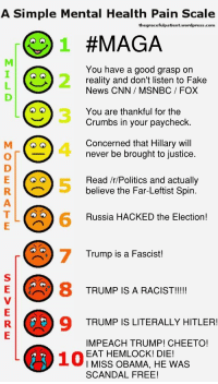 cnn.com, Fake, and News: A Simple Mental Health Pain Scale  thegracefulpatient.wordpress.com  AGA  You have a good grasp on  reality and don't listen to Fake  News CNN/ MSNBC/ FOX  You are thankful for the  Crumbs in your paycheck  Concerned that Hillary will  never be brought to justice  Read /r/Politics and actually  believe the Far-Leftist Spin  Russia HACKED the Election  Trump is a Fascist  8 TRUMP IS A RACISI!  9 TRUMP IS LITERALLY HITLER  IMPEACH TRUMP! CHEETO!  EAT HEMLOCK! DIE!  I MISS OBAMA, HE WAS  SCANDAL FREE!