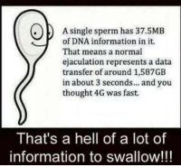 Information, Hell, and Thought: A single sperm has 37.5MB  of DNA information in it  That means a normal  ejaculation represents a data  transfer of around 1,587GB  in about 3 seconds... and you  thought 4G was fast.  That's a hell of a lot of  information to swallow!!!