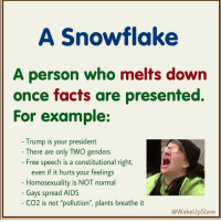 "Define Snowflake: A Snowflake  A person who melts down  once facts are presented  For example:  - Trump is your president  - There are only TWO genders  Free speech is a constitutional right,  even if it hurts your feelings  Homosexuality is NOT normal  - Gays spread AIDS  CO2 is not ""pollution, plants breathe it  @WakeUpSlave Define Snowflake"