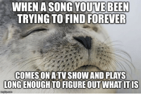 """Advice, Tumblr, and Animal: A SONG YOUVE BEEN  TRYING TO FIND FOREVER  WHEN  COMESON ATVSHOW AND PLAYS  LONG ENOUGH TO FIGURE OUT WHAT ITIS <p><a href=""""http://advice-animal.tumblr.com/post/175862964698/it-has-been-literally-20-years-i-had-nearly-given"""" class=""""tumblr_blog"""">advice-animal</a>:</p>  <blockquote><p>It has been literally 20 years. I had nearly given up hope.</p></blockquote>"""