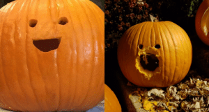 A squirrel has violated my pumpkin He will never be the same: A squirrel has violated my pumpkin He will never be the same