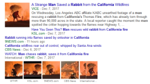 imx-doomer:  You guys.I think I've found Doomguy.: A Strange Man Saved a Rabbit from the California Wildfires  VICE - Dec 7, 2017  On Wednesday, Los Angeles ABC affiliate KABC unearthed footage of a man  rescuing a rabbit from California's Thomas Fire, which has already torn through  more than 90,000 acres in the state. A local reporter caught the moment the man  spotted the critter hopping towards the flames near Highway 1,  Have You Seen This? Man rescues wild rabbit from California fire  KSL.com - Dec 7, 2017  Rabbit running into flames saved by onlooker in California  9NEWS.com 11 hours ago  California wildfires roar out of control, whipped by Santa Ana winds  CBS News Dec 6, 2017  WATCH: Man chases rabbit, saves it from California fire  International - WTHR - Dec 7, 2017  International.  WTHR  KSL.com  9NEWS.com  CBS News imx-doomer:  You guys.I think I've found Doomguy.