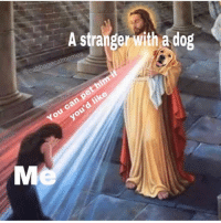 Thank you so much kind person. Via @cabbagecatmemes: A stranger with a dog  @cabbagecatmemes  can pe  You  d like Thank you so much kind person. Via @cabbagecatmemes