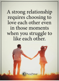 Love, Memes, and Struggle: A strong relationship  requires choosing to  love each other even  in those moments  when you struggle to  like each other.