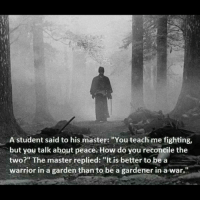 """Peace, How, and Warrior: A student said to his master: """"You teach me fighting,  but you talk about peace. How do you reconcile the  two?"""" The master replied: """"It is better to be a  warrior in a garden than to be a gardener in a war."""" https://t.co/T08bvLvqGc"""