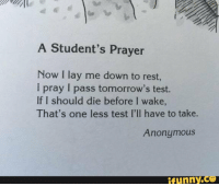 A student's prayer...: A Student's Prayer  Now I lay me down to rest,  I pray I pass tomorrow's test.  If I should die before I wake  That's one less test I'll have to take.  Anonymous  funny A student's prayer...