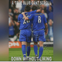 Memes, Blue, and 🤖: A TDUE BLUE CANT SCROLL  LAMPARD  DOWN WTHOUTLIKING @FrankLampard & @JohnTerry.26 💙🔥