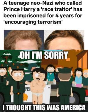 America, Prince, and Prince Harry: A teenage neo-Nazi who called  Prince Harry a 'race traitor' has  been imprisoned for 4 years for  'encouraging terrorism'  OHIM SORRY  FEH  ITHOUGHT THIS WAS AMERICA Red, white and blue... the union jack
