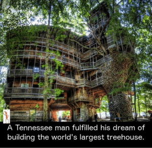 fulfilled: A Tennessee man fulfilled his dream of  building the world's largest treehouse.