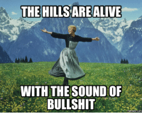 Image result for the hills are alive with the sound of bullshit