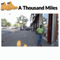 Makin my way uptown walking fast...faces pass and im DEADASS 😂😂😂 (Via @alwaysp0ppin) @toothirsty @thevoiceovergang @chris31576 @worldstar WSHH: A Thousand Miles Makin my way uptown walking fast...faces pass and im DEADASS 😂😂😂 (Via @alwaysp0ppin) @toothirsty @thevoiceovergang @chris31576 @worldstar WSHH