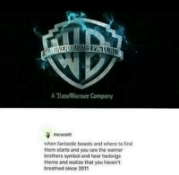 Memes, Saw, and Soon...: A Time Warner Company  mcscott  when fantastic beasts and where to find  them starts and you see the warner  brothers symbol and hear hedwigs  theme and realize that you haven't  breathed since 2011 Yes, absolutely this. As soon as I saw the WB and heard the music I felt this massive rush of emotion which didn't go away for the rest of the film. It all made me so sooo happy!! If you haven't seen it yet, absolutely go! - BroodingMoony