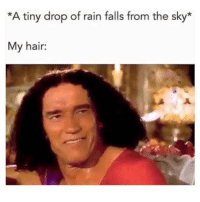 Funny, Memes, and Hair: *A tiny drop of rain falls from the sky*  My hair: SarcasmOnly