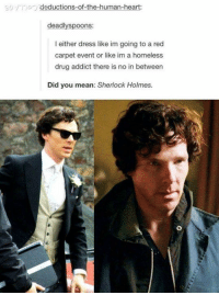Memes, Sherlock Holmes, and Vatican: a To deductions-of-the-human-heart  dead  spoons:  l either dress like im going to a red  carpet event or like im a homeless  drug addict there is no in between  Did you mean: Sherlock Holmes. I'm baackkk, and this time for good. I apologize for my on-and-off presence victims, but I promise from here on out I will be posting consistently.   Out of respect for fans everywhere, posts concerning the newest season will be limited only to things that will not spoil any major plot lines for at least several months. And, I hope my darling victims, you will extend that courtesy to others by resisting posting anything to the page or in the comments that may spoil it as well. I will personally be doing my best to moderate such content out.  Thank you. Yours truly,  ~Vatican Cameos~