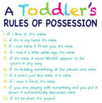 Memes, Saw, And Parenthood: A Toddleru0027s RULES OF POSSESSION If I Like It