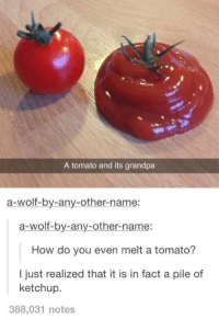 "Tumblr, Grandpa, and Blog: A tomato and its grandpa  a-wolf-by-any-other-name:  a-wolf-by-any-other-name:  How do you even melt a tomato?  I just realized that it is in fact a pile of  ketchup.  388,031 notes <p><a href=""http://makeuphall.tumblr.com/post/134927029909/the-32-dumbest-things-that-happened-in-2015"" class=""tumblr_blog"">makeuphall</a>:</p><blockquote><p><a href=""http://goo.gl/XV4Efz""><b>The 32 Dumbest Things That Happened in 2015:</b></a>  Melted tomato…<br/></p></blockquote>"