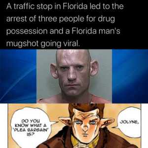 Traffic, Florida, and Drug: A traffic stop in Florida led to the  arrest of three people for drug  possession and a Florida man's  mugshot going viral.  DO YOu  KNOW WHAT A  PLEA BARGAIN'  IS?  JOLYNE, Just gonna drop this here