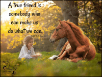 """A true friend is  somebody who  can make us  do what we can.  Ralph Waldo Emerson """"A true friend is somebody who can make us do what we can"""" -Ralph Waldo Emerson  #horse #RalphWaldoEmerson"""