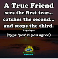 """Friends, Memes, and True: A True Friend  sees the first tear...  catches the second...  and stops the third.  Angelique  (type """"yes' if you agree)  Understanding  Compassion Understanding Compassion"""