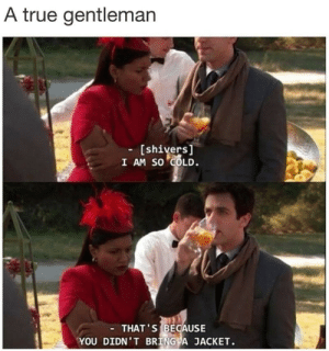 Goals, True, and Tumblr: A true gentleman  - [shivers  I AM SO COLD.  THAT'S BECAUSE  YOU DIDN' T BRING A JACKET. memehumor:  Relationship Goals