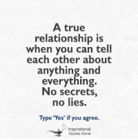 True, Quotes, and Genie: A true  relationship is  when you can tell  each other about  anything and  everything.  No secrets,  no lies.  Type 'Yes' if you agree.  Inspirational  Quotes Genie <3
