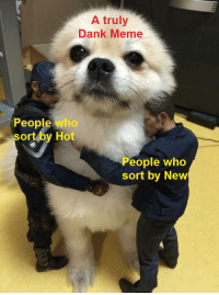 Rare puppers indeed.: A truly  Dank Meme  People who  sort by Hot  eople who  sort by New Rare puppers indeed.