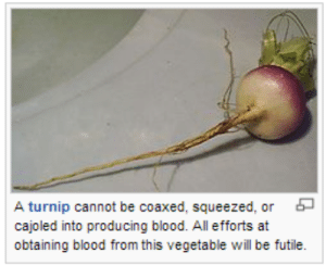 Tumblr, Blog, and Http: A turnip cannot be coaxed, squeezed, or  cajoled into producing blood. All efforts at  obtaining blood from this vegetable will be futile. jjackdaw:catch me out in the fields frantically cajoling the turnips for their blood