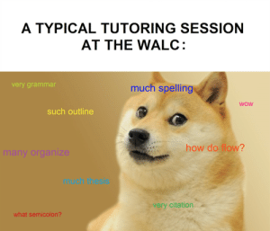 The life of a tutor in two memes. – Whee Write: A TYPICAL TUTORING SESSION  AT THE WALC:  ery grammar  much spelling  WOW  such outline  how do flow?  much thesis  very citation  what semicolon? The life of a tutor in two memes. – Whee Write
