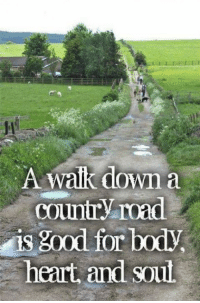 Country cutie: A Walk down a  Country road  is good for  heart and soul Country cutie