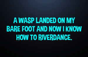 Funny, Memes, and How To: A WASP LANDED ON MY  BARE FOOT AND NOW I KNOW  HOW TO RIVERDANCE. Author unknown. Found at: Not Your Momma's Funny Page
