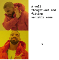 Programming, Thought, and Irl: A well  thought-out and  fitting  variable name Programming_irl