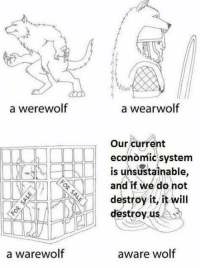 Wolf, Werewolf, and Destroyer: a werewolf  a warewolf  a wear wolf  Our current  economic system  is unsustainable,  and if we do not  destroy it, it will  destroy us  aware wolf
