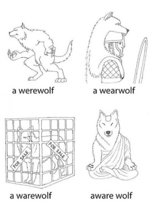 Tumblr, Blog, and Http: a werewolf  a wearwolf  a warewolf  aware wolf srsfunny:Learn Your Wolf Meaning