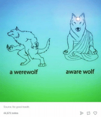 Good, Wolf, and Humans of Tumblr: a werewolf  Source for good-health  44,572 notes  aware wolf